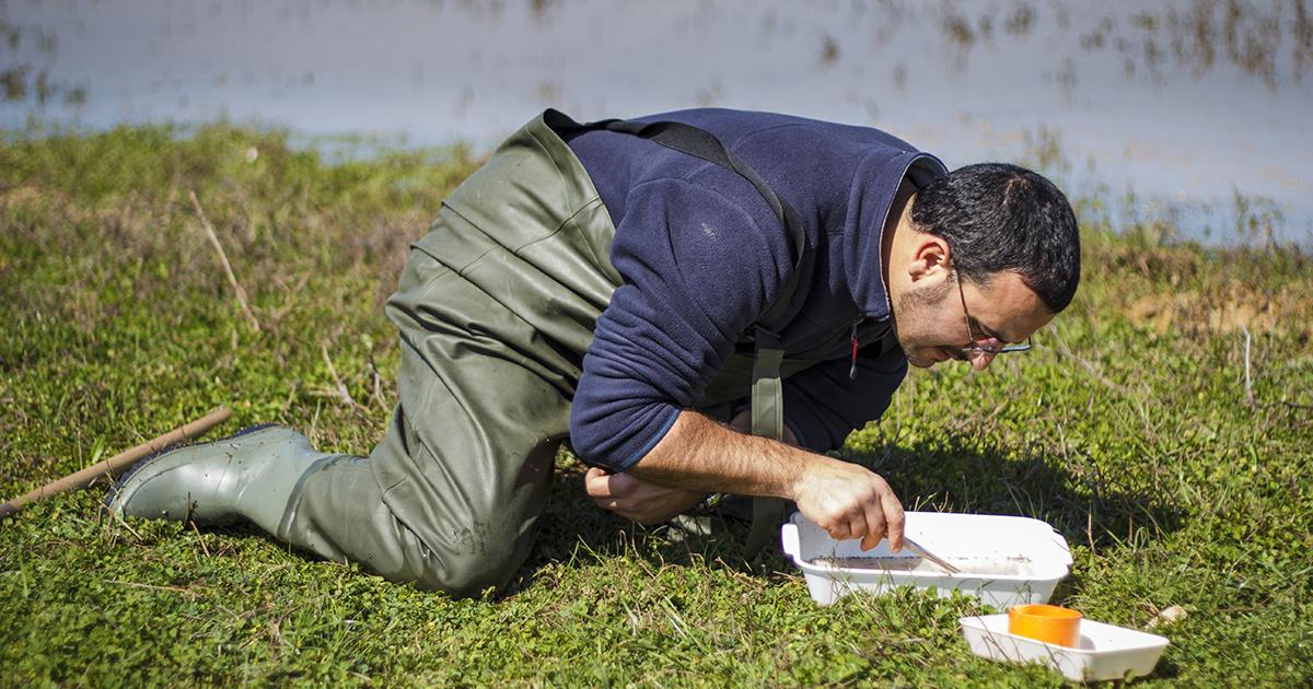 Les métiers du génie écologique gagnent en qualification